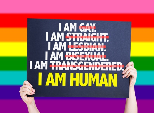 I am Gay/Straight/Lesbian/Bisexual/Trans I am Human card